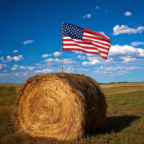 ranchworx pasture hay